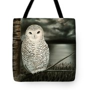 The Marsh At Night Tote Bag