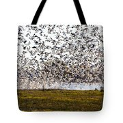 The Mass Jump Tote Bag