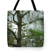 The Mating Dance Tote Bag