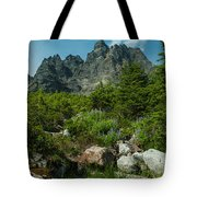 the Meadows Below Tote Bag