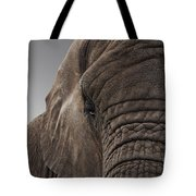 The Meek Mammouth Tote Bag