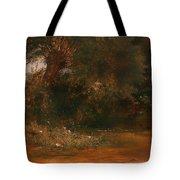 The Moor Hen's Haunt Tote Bag