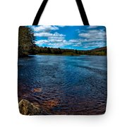 The Moose River In The Spring Tote Bag