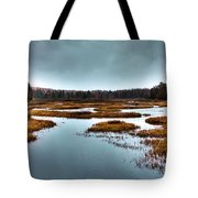 The Moose River - Old Forge New York Tote Bag