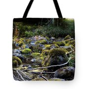 The Moss In The River Stones Tote Bag