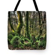 The Mossy Creatures Of The  Old Beech Forest 1 Tote Bag