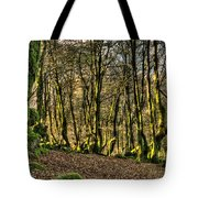 The Mossy Creatures Of The  Old Beech Forest 4 Tote Bag