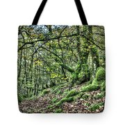 The Mossy Creatures Of The  Old Beech Forest 5 Tote Bag