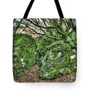 The Mossy Creatures Of The Old Beech Forest Tote Bag