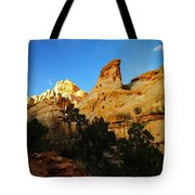 The Mountains Of Capital Reef   Tote Bag