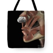 The Muscles Of The Face Tote Bag