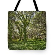 The Mysterious Forest - The Magical Trees Of The Los Osos Oak Reserve. Tote Bag