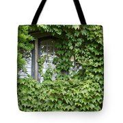 The Mystery Within Tote Bag