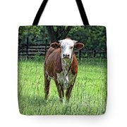 The Neighbor Tote Bag by Jan Amiss Photography