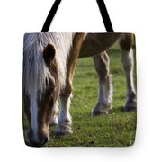 The New Forest Pony Tote Bag
