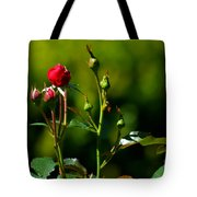 The New Generation Tote Bag