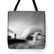 The Nubble In Trouble Tote Bag by Lori Deiter