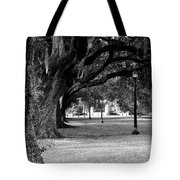 The Oaks Of Audubon Park Tote Bag