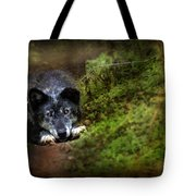 The Old And Not Too Bad Wolf Tote Bag