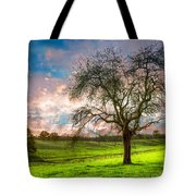 The Old Apple Tree At Dawn Tote Bag