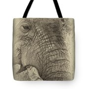 The Old Elephant Bull Tote Bag