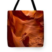 The Old Man Of The Canyons Tote Bag