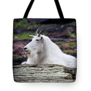 The Old Man Of The Mountains Tote Bag