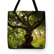 The Old Mango Tree Tote Bag