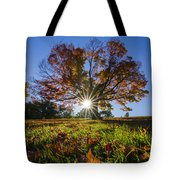 The Old Maple Tote Bag