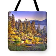 The Old Resting Place Tote Bag