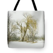 The Old Shack Tote Bag