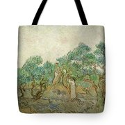 The Olive Orchard Tote Bag
