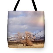 The Only Tree Tote Bag