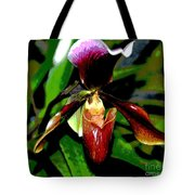 The Orchid Room Tote Bag