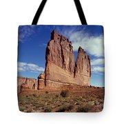 The Organ, Arches National Park, Utah Tote Bag