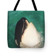 The Original Shamu Orca Whale At Sea World San Diego California 1967 Tote Bag