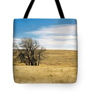The Other Colorado Tote Bag