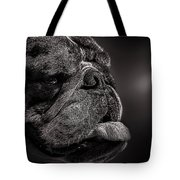 The Other Dog Next Door Tote Bag by Bob Orsillo