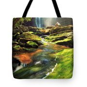 The Other Falls Tote Bag
