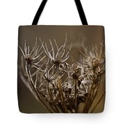 The Other Shades Of Fall Tote Bag