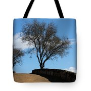 The Other Side Of The Wall Tote Bag