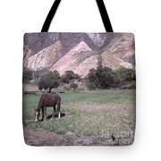 The Painters Palette Jujuy Argentina Tote Bag