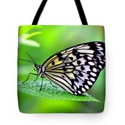 The Paper Kite Or Rice Paper Or Large Tree Nymph Butterfly Also Known As Idea Leuconoe 2 Tote Bag