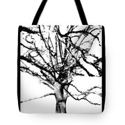 The Park Bench With Scripture Tote Bag