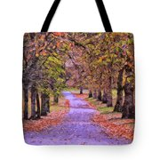 The Park In Autumn Tote Bag