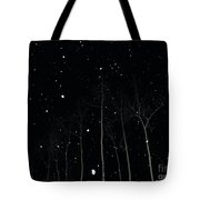 The Park In Winter Tote Bag