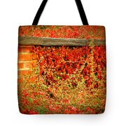 The Passion Wall Tote Bag