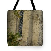The Past  Tote Bag