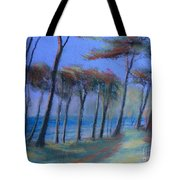 The Path At Lands End Tote Bag