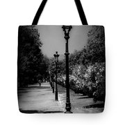 The Path In Nature Tote Bag